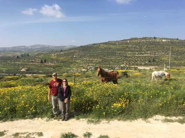 The tourists don't usually come here. The hill in the background is the old Hill of Samaria where the Northern Kingdom had its capital.