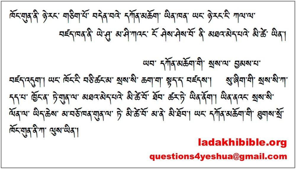 LadakhiCard.jpg