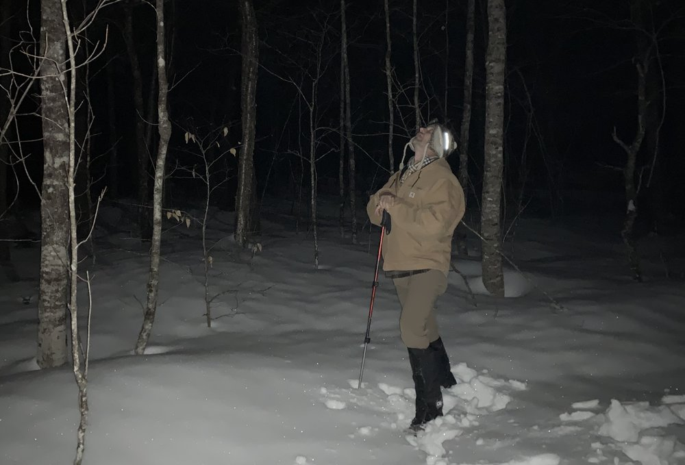 . . . or Breakneck Hill in the middle of the night in the thick Maine woods. If ever there was a place to see a sasquatch, it was in that place.