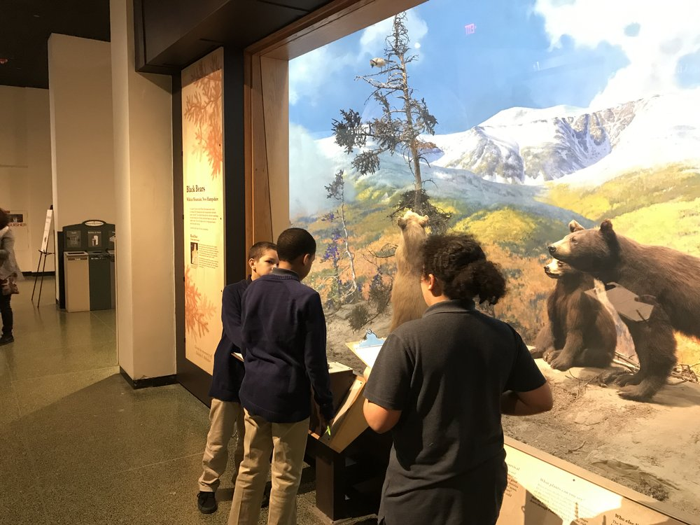Steven, Blake and Genaro admiring the bear exhibit