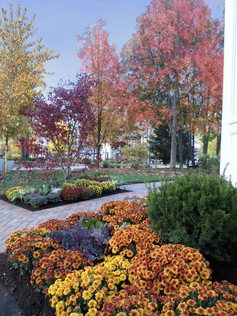 Winnetka Seasonal Plantings