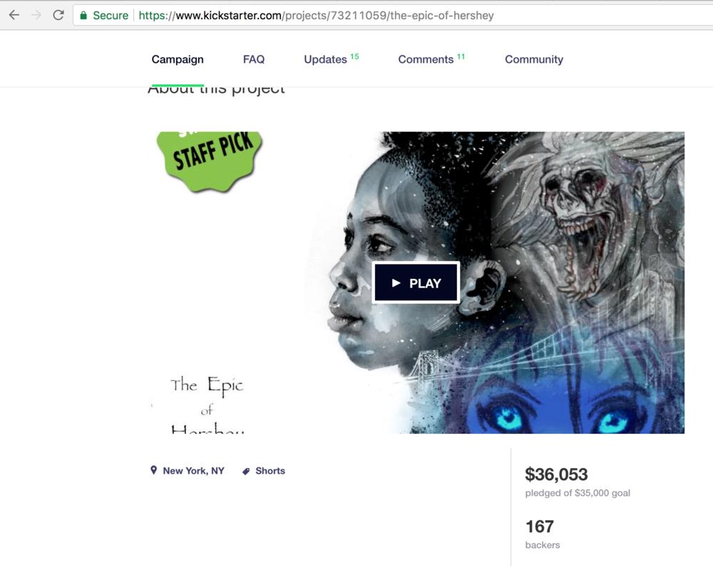 Kickstarter - The campaign for