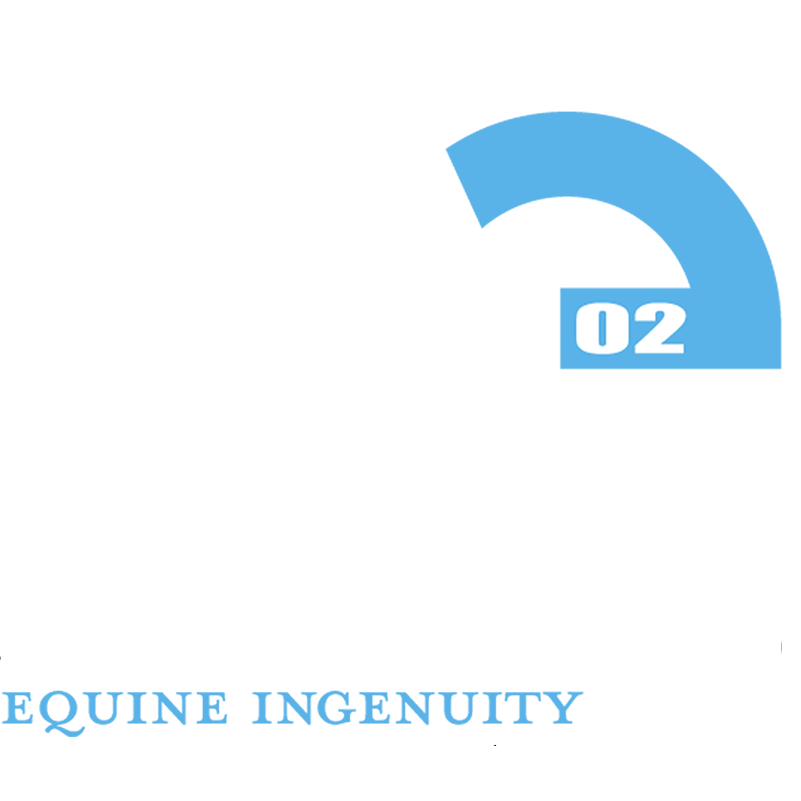American Equus Banner_white.png