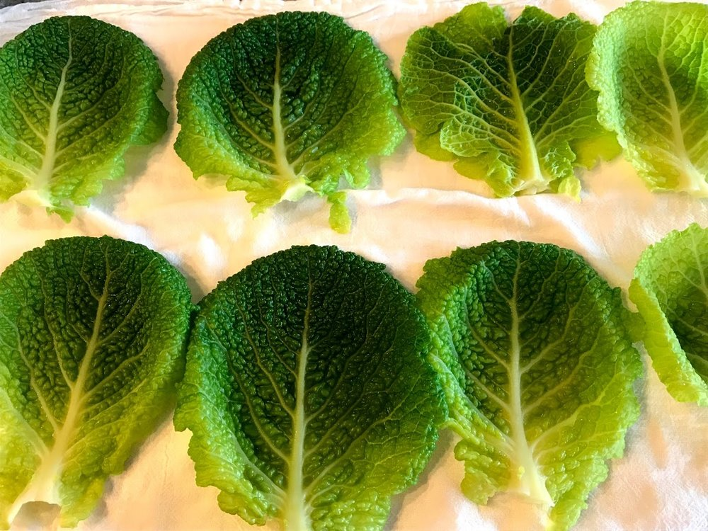 Cabbage leaves blanched and drying on tea towel.