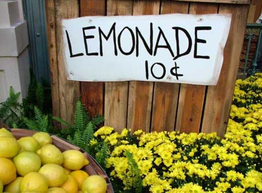peaceful fruits entrepreneur