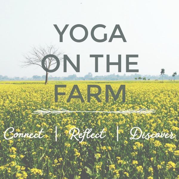 yogaonthefarm.jpg