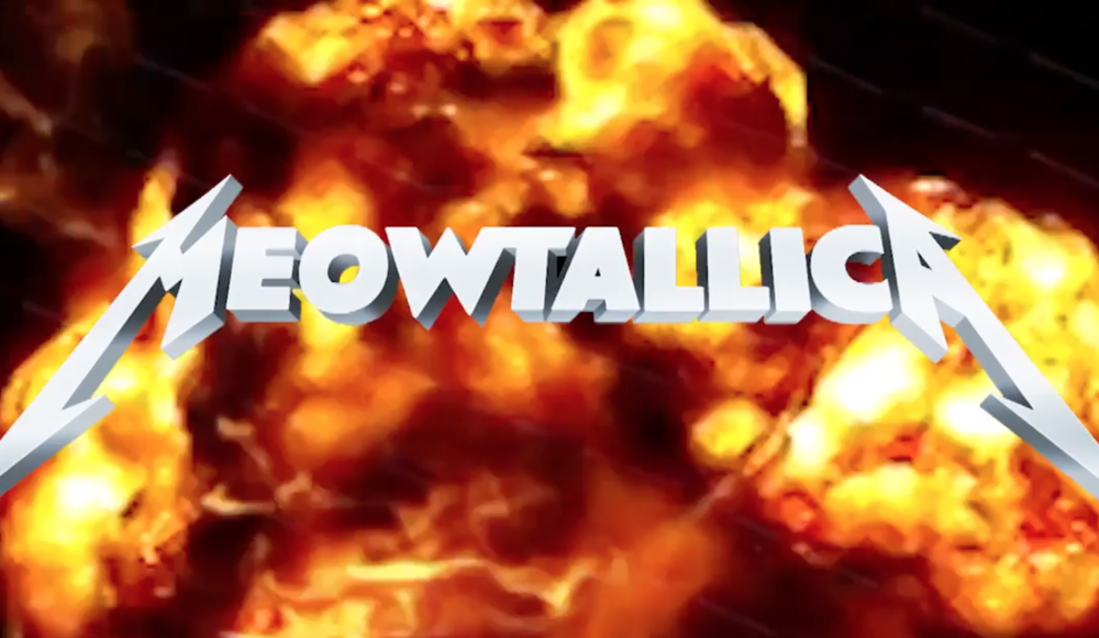 Watch This Fake Ad For Meowtallica: Cats Singing Metallica