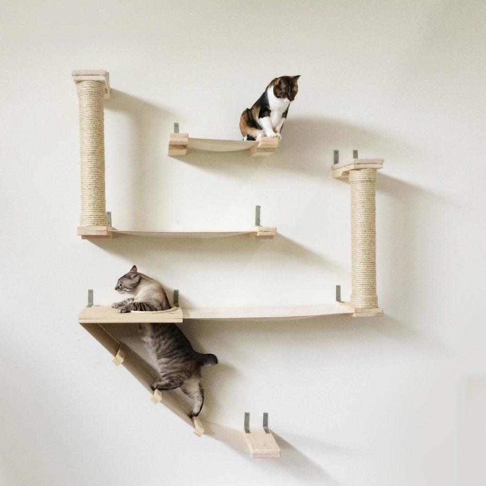 Roman Cat Fort