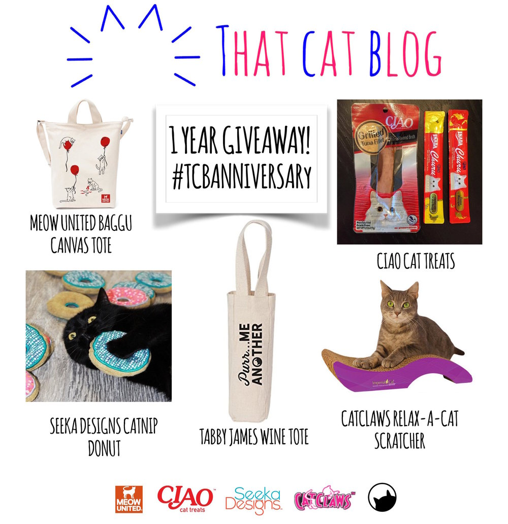 that-cat-blog-one-year-anniversary-giveaway