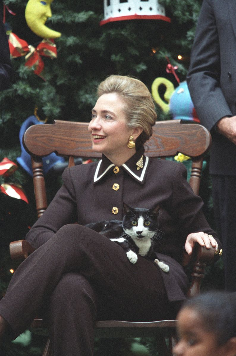 Photograph_of_First_Lady_Hillary_Rodham_Clinton_and_Socks_the_Cat-_12-13-1995_6461521265.jpg