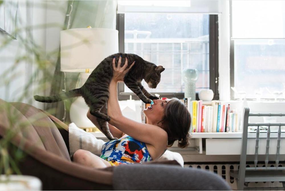 tamar-arslanian-kip-cat-shop-cats-of-new-york