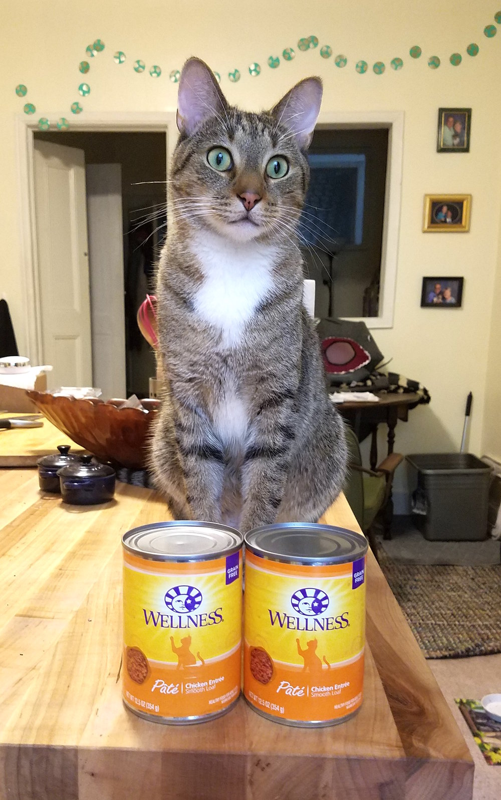 For the love of Pete - can someone with a can opener help a brotha out?!