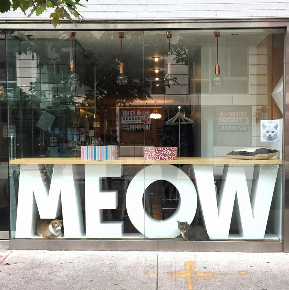 MEOW PARLOUR - 46 Hester StreetNew York, NY 10002