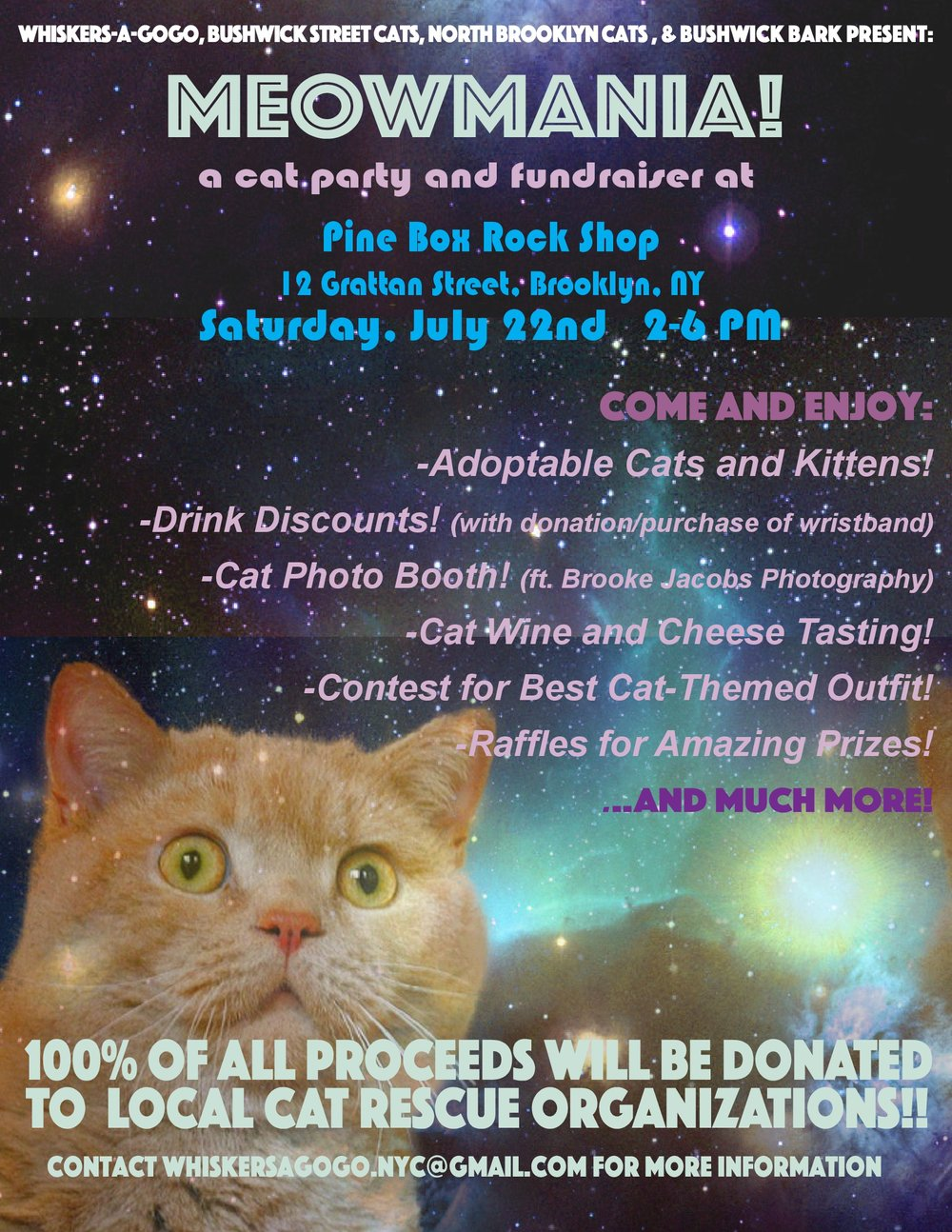 meowmania-cat-party-brooklyn-rescue-pine-box-rock-shop-that-cat-blog