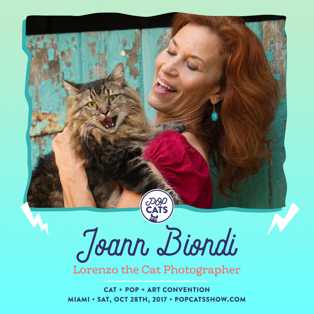 joann-biondi-pop-cats