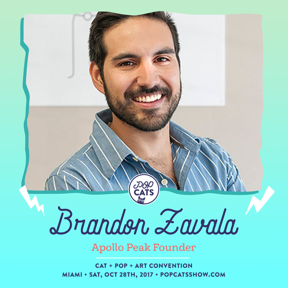 brandon-zavala-pop-cats