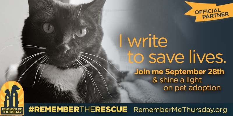 Help Us Recognize #RememberMeThursday And All The Shelter Pets