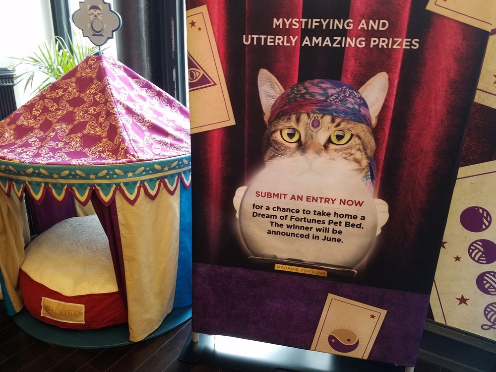 "Check out one of the grand prizes (a super lush ""Dream of Fortunes"" cat bed!) Visit the website to enter. // Photo: That Cat Blog"