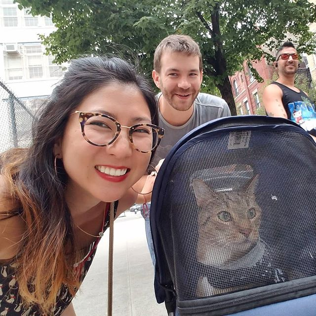 What do you think about people who take their cat out in a stroller? A) CRAZY PEOPLE; OR B) THE MOST AMAZING THING YOU'VE EVER SEEN IN YOUR ENTIRE LIFE 😻😹 Thomas got to visit @peterpandonut while the humans ordered delicious donuts, and @thethingbrooklyn while the humans thrifted (typical Brooklynites!) Where should Thomas go next?! 😁 #adventurecat #catpeople #insanepeople #meowmonday #crazycatlady #strollercat #catsofinstagram #greenpoint #weekending #ilovemycat #catsrule #cream #catsofbrooklyn #cats_of_instagram #tabbycat #kitteh #catventures #adventurecats #brooklyncats #furbaby #igcats #instacatlover #cutecatcrew #lolcat #leashcat #kittymeow #mondaymotivation