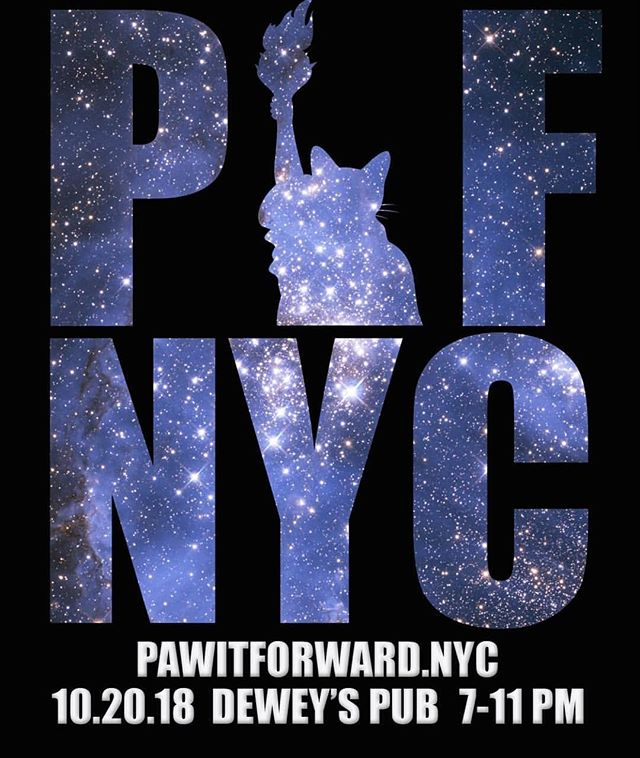 🎉🎊 Come hang out with all your favorite cat-stagrammers at the 4th annual #PawItForwardNYC! It's all happening Oct 20th pawty people! Tickets are still on sale (link in bio!) Come in your finest cat themed apparel and drink at our 3 hour open bar, and enter the raffle to win some sweet cat and human prizes! This year 100% of proceeds will benefit Brooklyn's own @flatbushcats ... Will you be there?? 🎉🎊