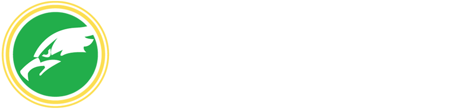 Hawk Energy Solutions