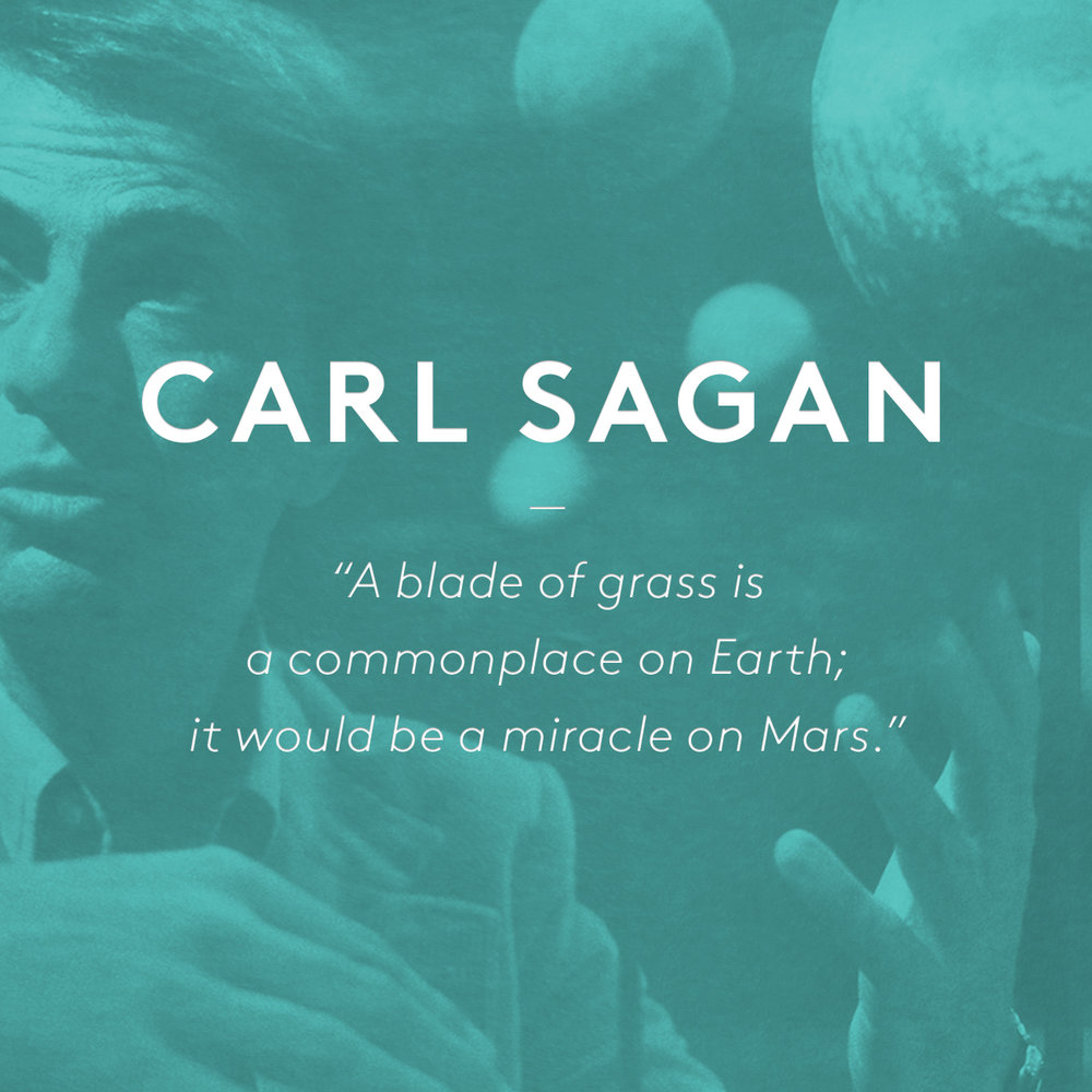 """for Earth day, we did a quote tribute to Carl Sagan.  The full quote:""""A blade of grass is a commonplace on Earth; it would be a miracle on Mars. Our descendants on Mars will know the value of a patch of green. And if a blade of grass is priceless, what is the value of a human being?"""" ― Carl Sagan, Pale Blue Dot: A Vision of the Human Future in Space"""