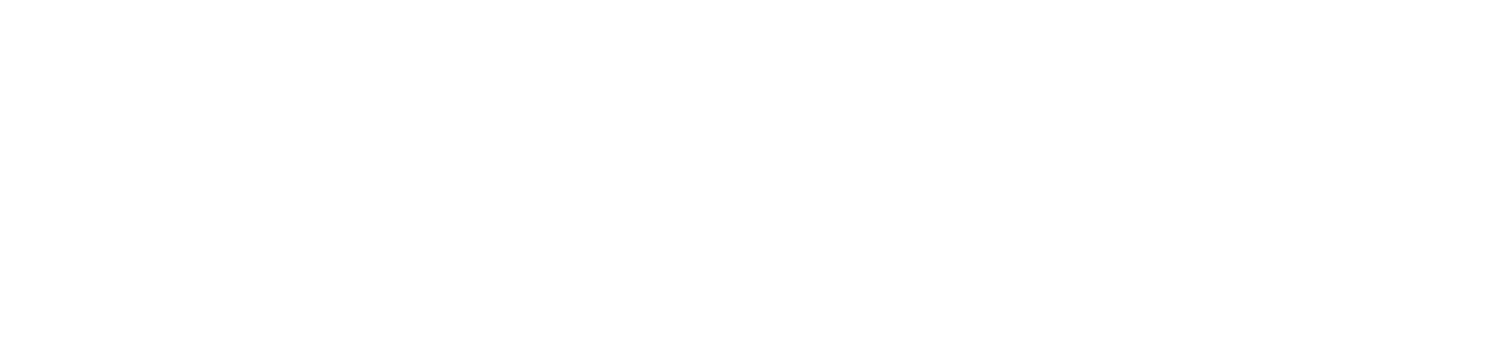 AZ Wing Chun University