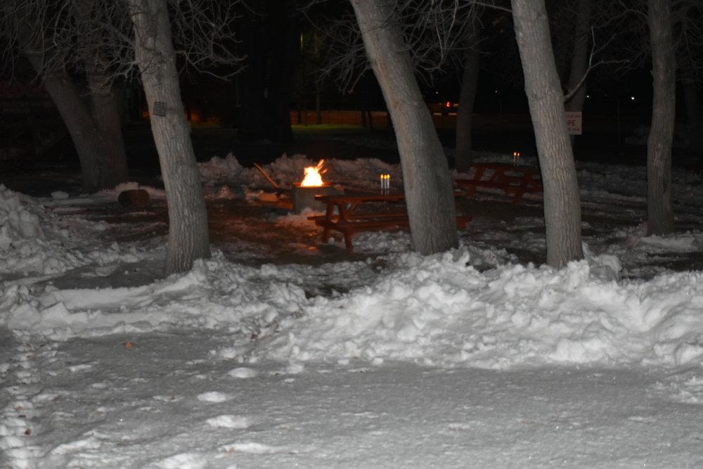 Fire pit in Winter.JPG