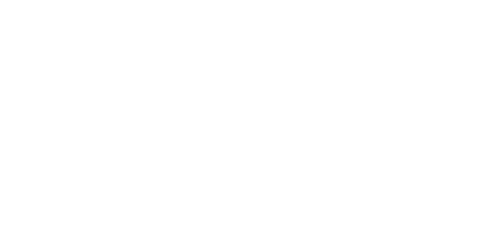 smart+survey+logotype+w.png