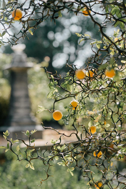 CemeteryWedding-3.jpg