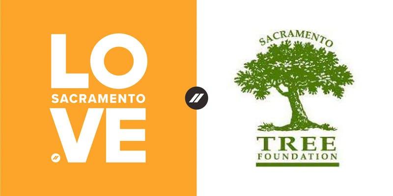 Sac Tree.jpg