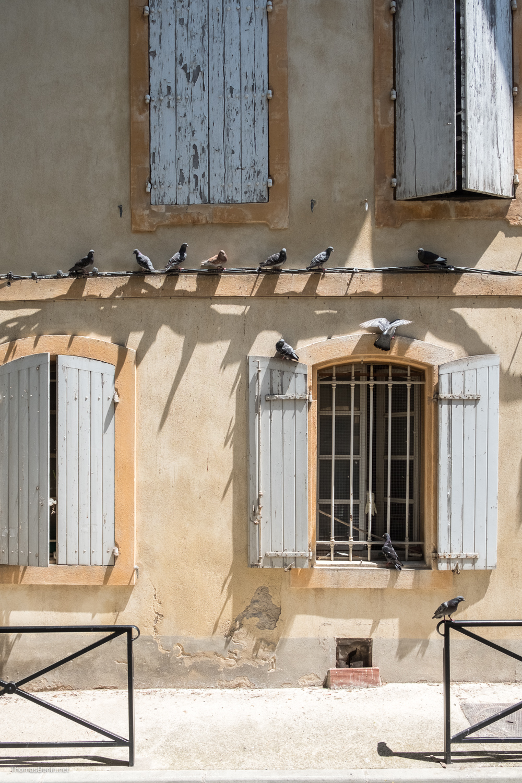 Thomas Berlin Arles 2018-8246.jpg