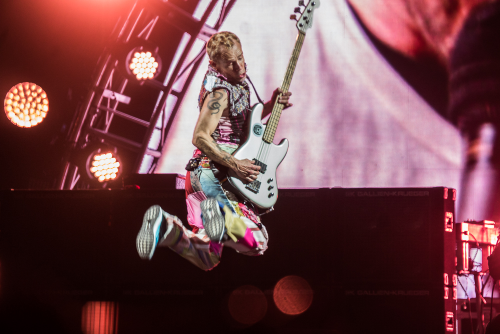 Flea of Red Hot Chili Peppers
