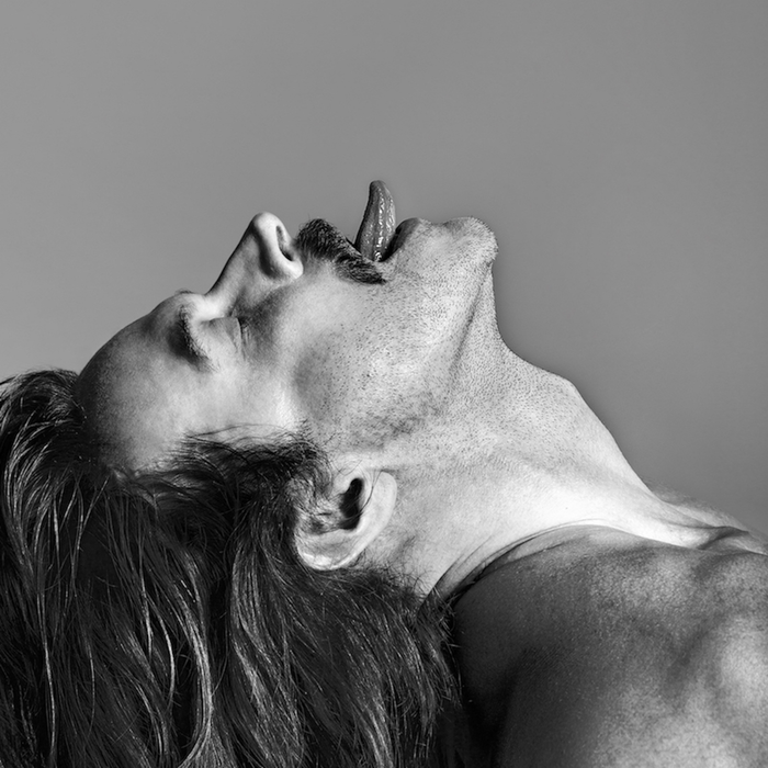 fischerspooner---sir_sq-1d4b3210e7da907c82d9792d3664e0e4ca23a32d-s700-c85.png