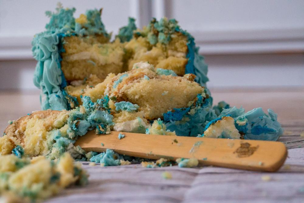 Cole Cake Smash - Bryan Lasky