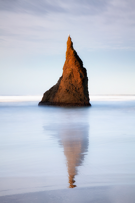 BANDON BIRD ROCK.WEBSITE
