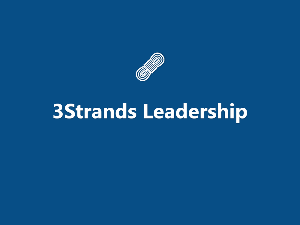 DCS_course_featured_IMG_1600x1200_3Strands_Leadership.png