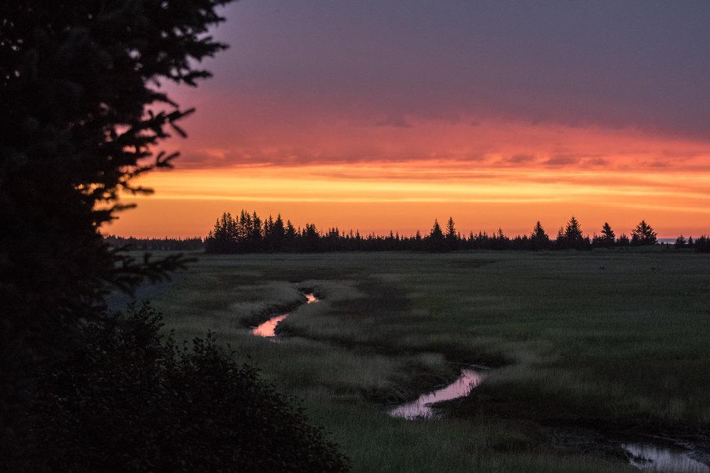 EdneyAP_Alaska2016-569.jpg