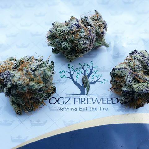 ogz fire weed.jpg
