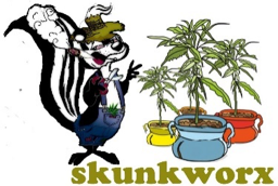 skunkwork.png