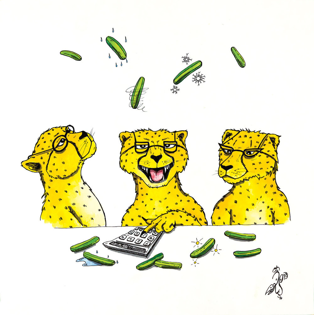 C is for Clever cheetahs calmly calculate climatic cucumbers