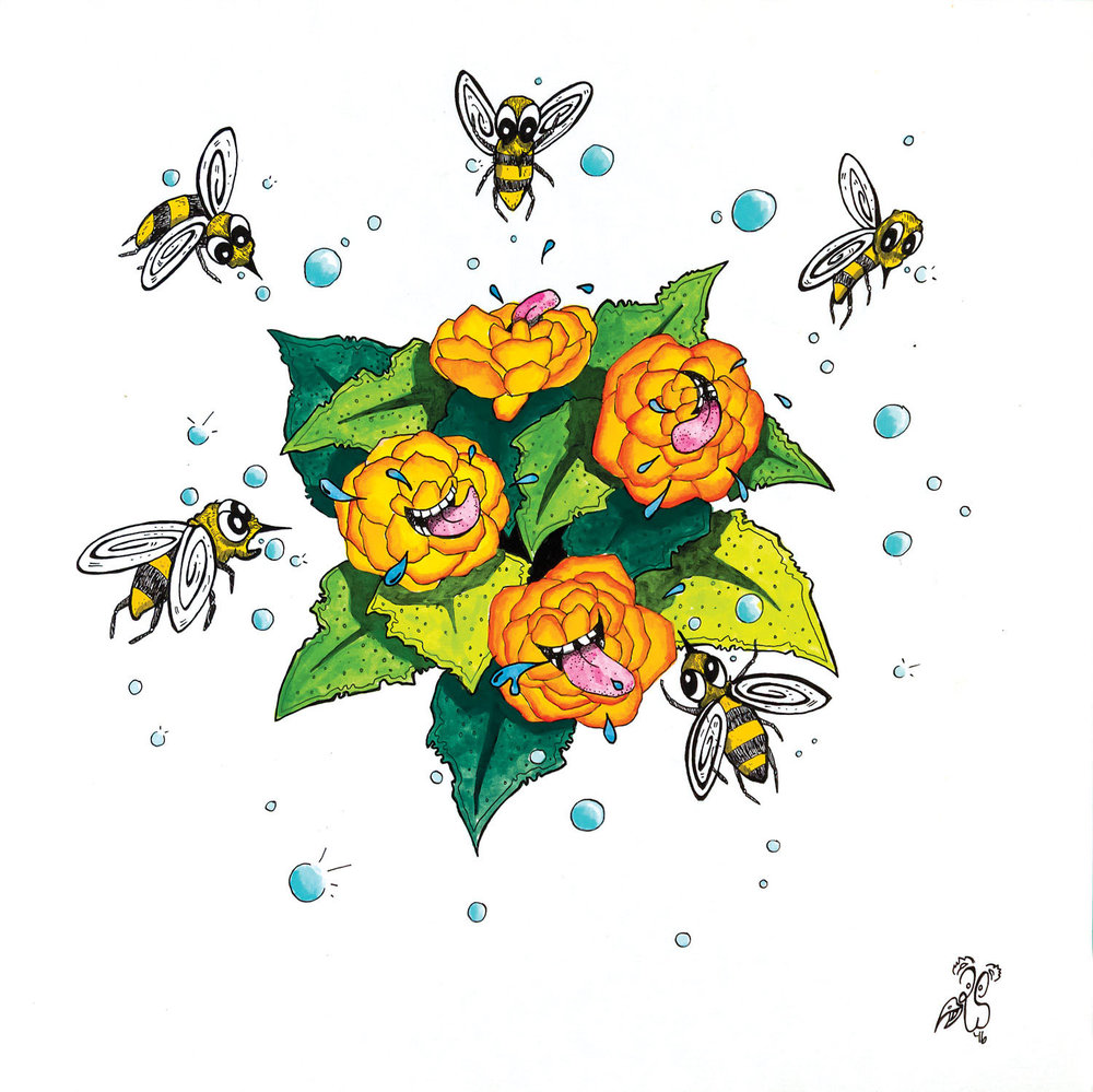 B is for Blistering begonias bewilder baffled bubbly bees