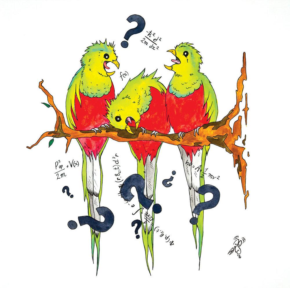 Q is for Quixotic querulous quetzals quiz quantum questions