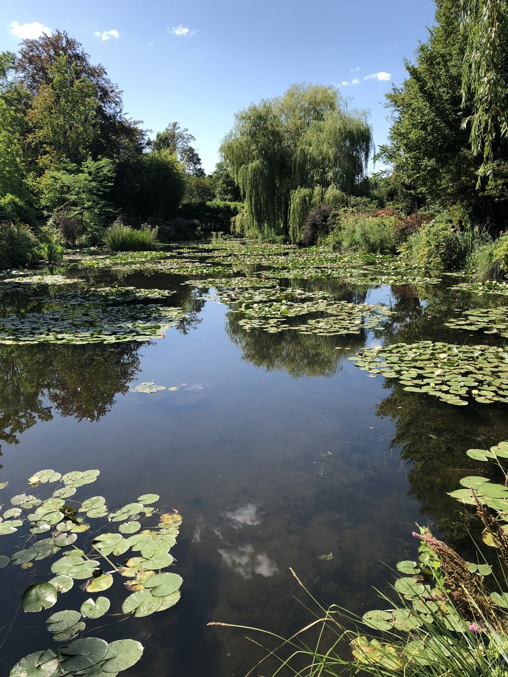 Gershman2_Monets Water Lilies Giverny.jpg