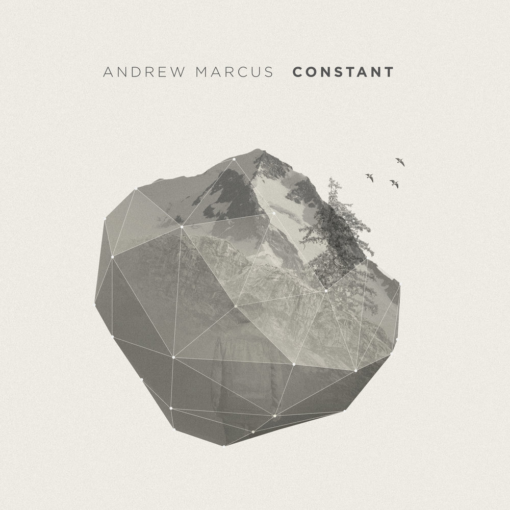 Andrew Marcus | Constant