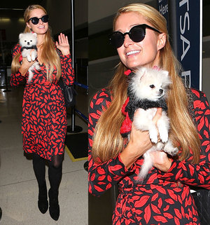 Paris-Hilton-at-LAX-with-Mr-Amazing.jpg