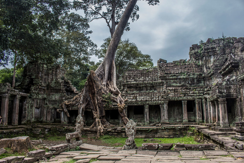 The entrance to Preah Khan is a beautiful reminder of the power of nature.
