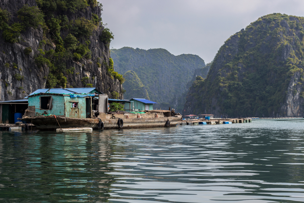 Concrete-Boats-In-Cat-Ba-Asia-Outdoors.jpg