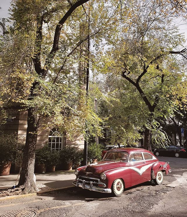 〰️ MEXICO CITY 〰️ Our favourite thing about Mexico City so far: never quite knowing what you'll find around the next corner. ⠀⠀ Like this vintage, uh, wind up car. 👌 ⠀⠀ ⠀ ⠀⠀ ⠀ ⠀⠀ ⠀ ⠀⠀ ⠀ ⠀⠀ ⠀ ⠀⠀ ⠀ ⠀⠀ ⠀ ⠀⠀ ⠀ #gosquab #gosquabmexico #mytinyatlas #getlostclub #culturetrip #staycurious #theprettycities #wheretofindme #pathport #artiseverywhere #fromstreetswithlove #cityart #mexicocity #visitmexico #vivemexico #mexicolors #mextagram #foundinmexico #ig_mexico #mexico_maravilloso #mexico_amazing