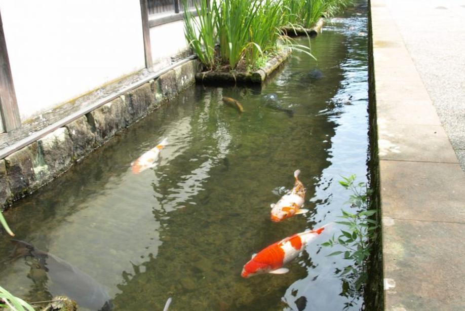 日本遺産総合活用活性化事業支援業務('15 島根県津和野町) - 津和野町の日本遺産にまつわる各種取り組みについて、来訪者へのアンケート調査により事業の評価を把握し、今後の方向性を提案しました。